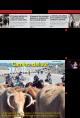 Portada de Las Noticias 13 de Noviembre de 2015